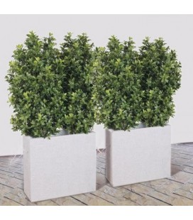 Pianta artificiale Osmanthus cm100x50