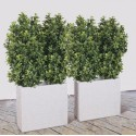 Pianta artificiale Odmanthus cm100x70