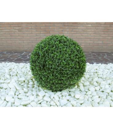Pianta artificiale Palla di bosso 56 cm viridium