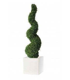 Pianta artificiale spirale buxus viridium VIR 0051