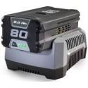 Caricabatterie Stiga SFC 80 AE